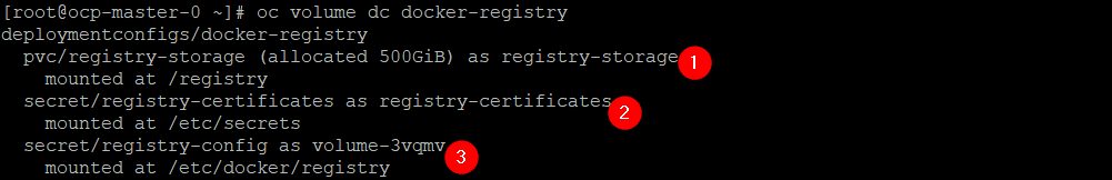 Volume details for the Registry deployment config